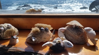 Judah made all of these shell creatures from treasures collected on walks