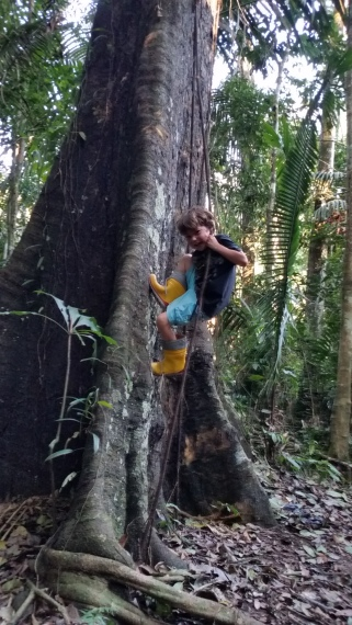 Judah swinging from jungle vines